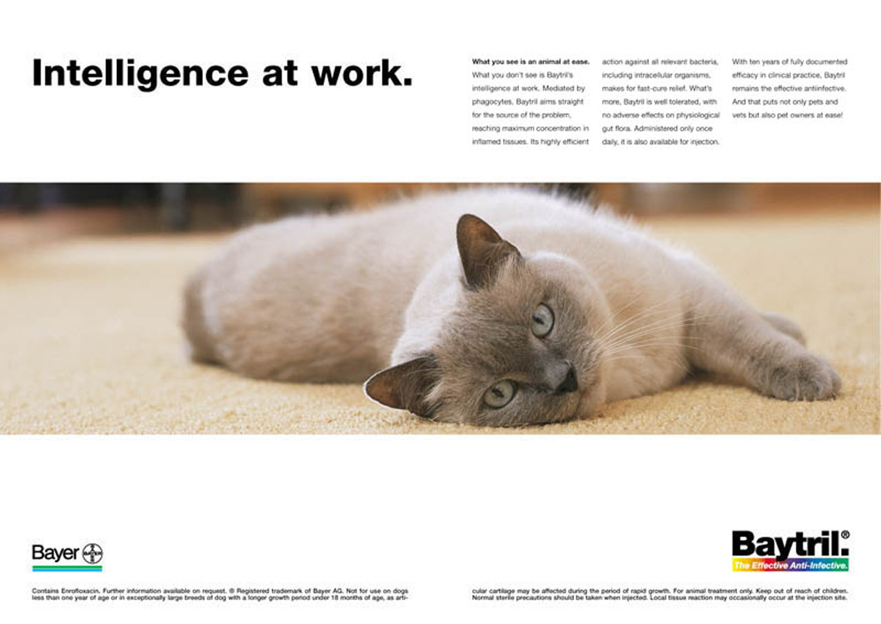 Werbefotos für PR-Aktionen, Printmedien und Werbekampagnen - Zerbes Werbefotografie Köln